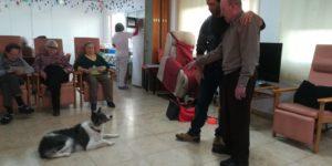 Programa de terapia canina conjunta SED Molina, San Javier, Alameda y Caravaca
