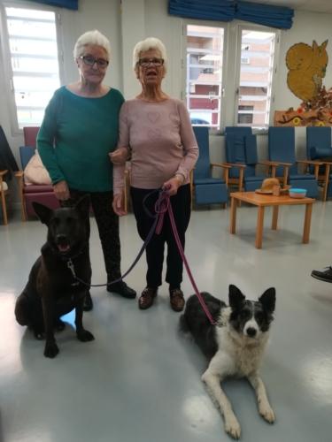 Programa de terapia canina conjunta SED Mensajeros de la Paz Alameda 5