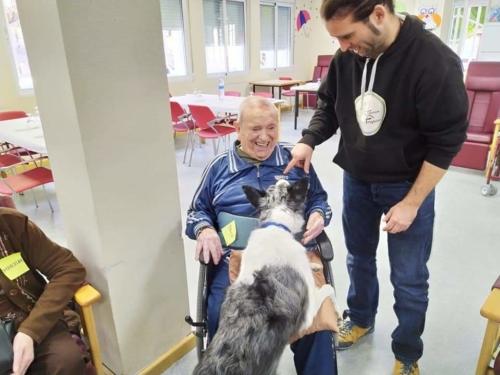 Programa de terapia canina conjunta SED Mensajeros de la Paz Murcia Molina 2